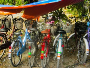 1-bike8